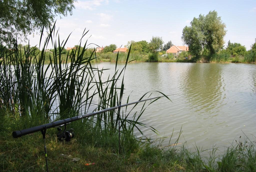 Palárikovo - rybník